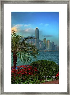 Hong Kong Mornings Framed Print by Bibhash Chaudhuri