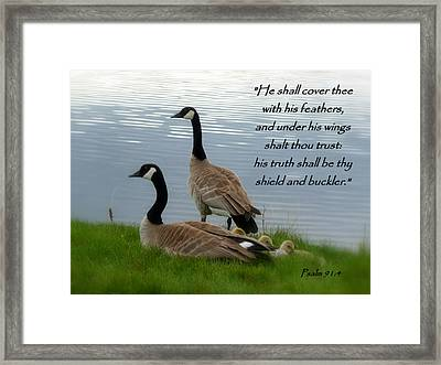 Honker Family Psalm 91 Framed Print by Cindy Wright