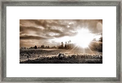 Hope II Framed Print by Rory Sagner
