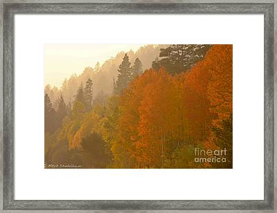 Framed Print featuring the photograph Hope Valley by Mitch Shindelbower