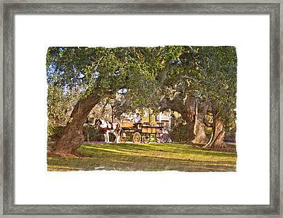 Horse And Buggy Framed Print by Debra and Dave Vanderlaan