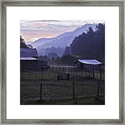 Horse At Home - North Carolina Farm Scene Framed Print by Rob Travis