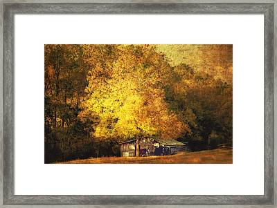 Horse Barn In The Shade Framed Print by Kathy Jennings