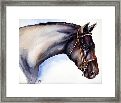 Horse Head 5 Framed Print by Leyla Munteanu