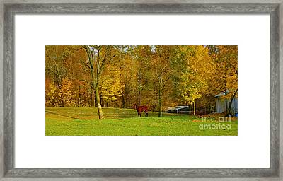 Horse In Autumn Framed Print by Kathleen Struckle