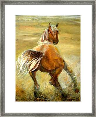 Horse In Field Framed Print