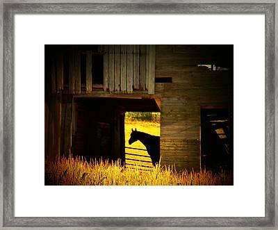 Horse In The Barn Framed Print by Joyce Kimble Smith