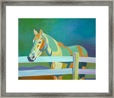 Horse In The Paddock Framed Print by Thierry Keruzore