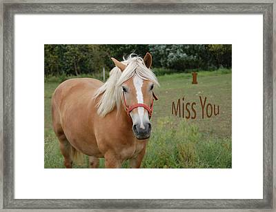 Horse Miss You Framed Print by Aimee L Maher Photography and Art Visit ALMGallerydotcom