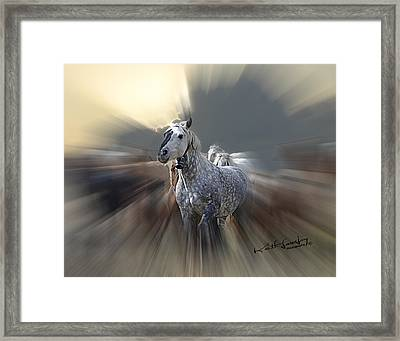 Horse Of A Different Color Zoomed Framed Print