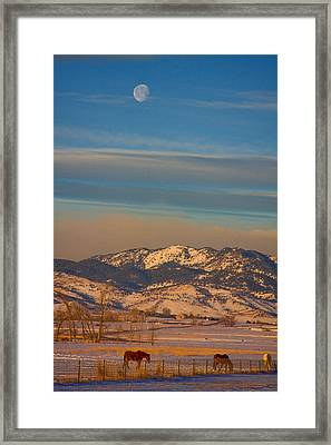 Horses And Moon Framed Print