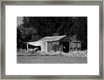 Horses And Old Barn Framed Print