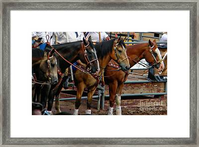 Horses Framed Print by Michelle Frizzell-Thompson