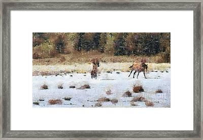 Horses Running Framed Print by Odon Czintos