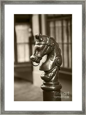 Horsing Around Framed Print by Leslie Leda