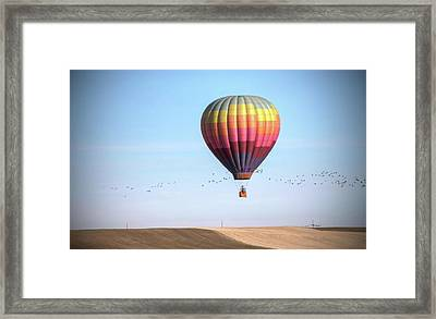 Hot Air Balloon And Birds Framed Print