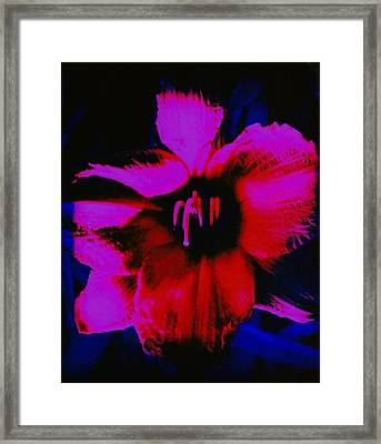 Framed Print featuring the photograph Hot by Carolyn Repka