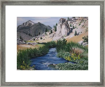 Hot Creek Framed Print by Barbara Prestridge