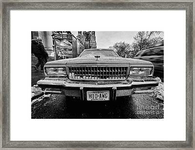 Hot Dawg At Central Park Framed Print by John Farnan