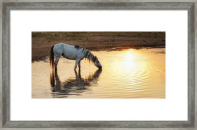 Hot Day Ahead Framed Print by Ron  McGinnis