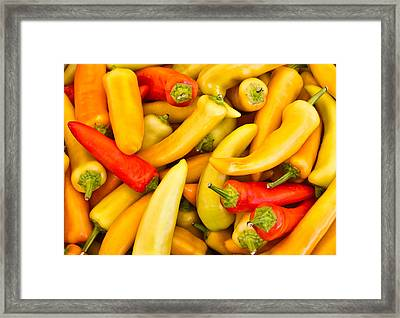 Hot Peppers Red And Yellow Framed Print by Douglas Barnett