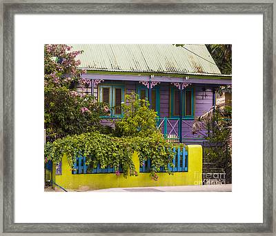 House Of Colors Framed Print by Rene Triay Photography