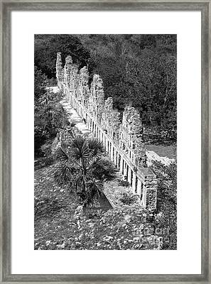 House Of The Doves At Uxmal Mexico Black And White Framed Print by Shawn O'Brien
