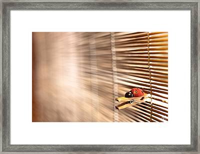 House Of The Rising Ladybug Framed Print by Máté Makarész