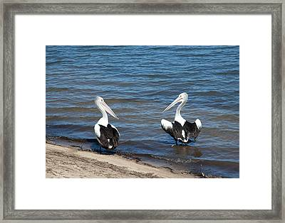 How Are You? Framed Print