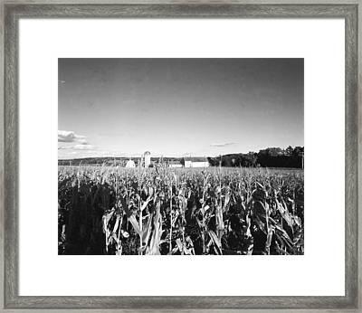 How Corny Framed Print by Jan W Faul