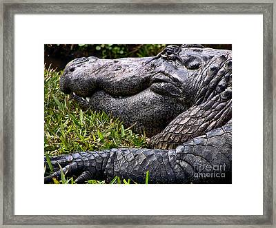 How Much Closer Can You Get Framed Print