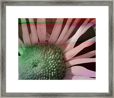 How The Sun Rose Framed Print by Bonnie Bruno