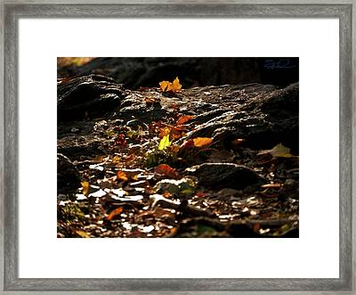 How We Should Leave... Framed Print