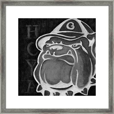 Hoya Jackbw2 Framed Print by Leslie Rock