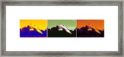 Hudson Birds Framed Print