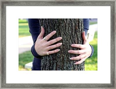 Hug A Tree Framed Print by Susan Stevenson