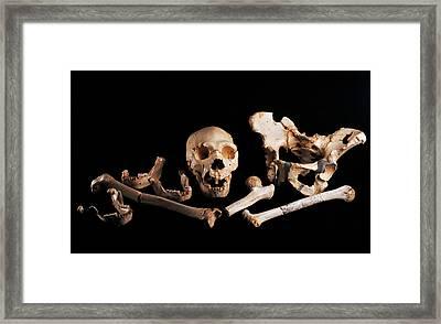 Human Fossils, Sima De Los Huesos Framed Print by Javier Truebamsf