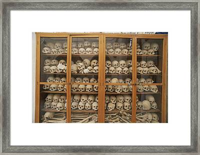 Human Skulls And Femurs Fill A Display Framed Print by Tino Soriano