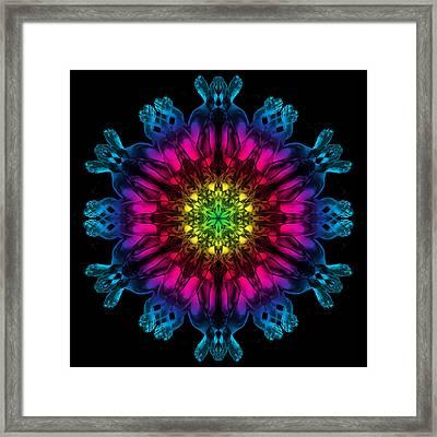 Humandala 3 Framed Print by David Kleinsasser