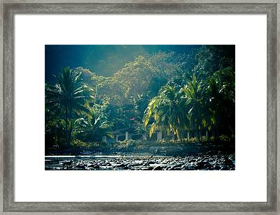 Humid Paradise Framed Print by Anthony Doudt