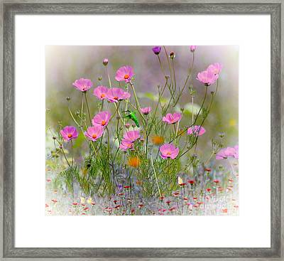 Hummingbird In The Cosmos Framed Print