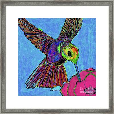 Hummingbird On Blue Framed Print