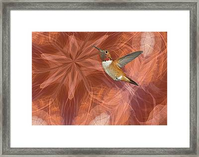 Hummingbird Portal Framed Print by Gregory Scott