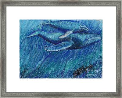Humpback Whale Mother And Calf Framed Print by Jamey Balester