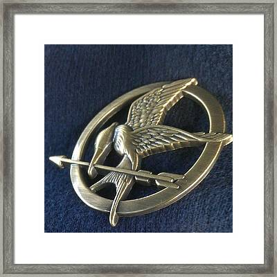 Hunger Games Mocking Bird Pin Framed Print