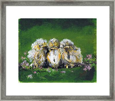 Hungry And Grumpy Framed Print