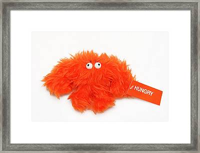Hungry Framed Print by Andee Design