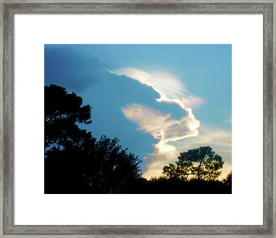 Hungry Cloud Framed Print by Juliana  Blessington