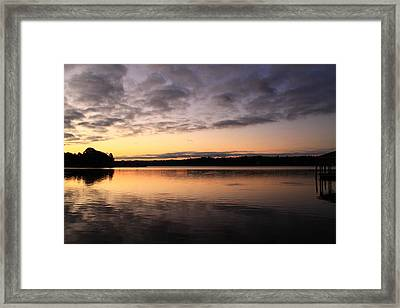 Hungry Fish At Sunrise Framed Print