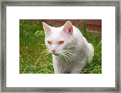 Hunting Cat Framed Print by Tyra  OBryant